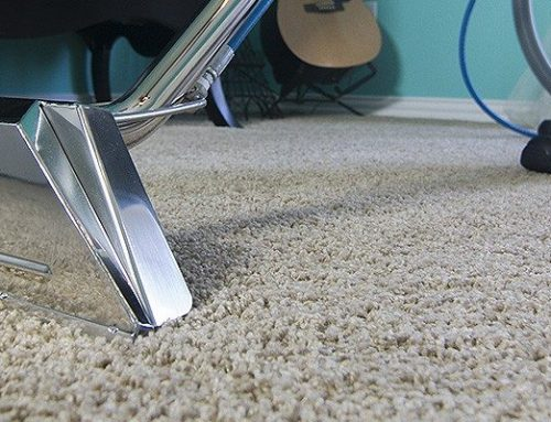 Wet Carpets 101: Preventing Mould