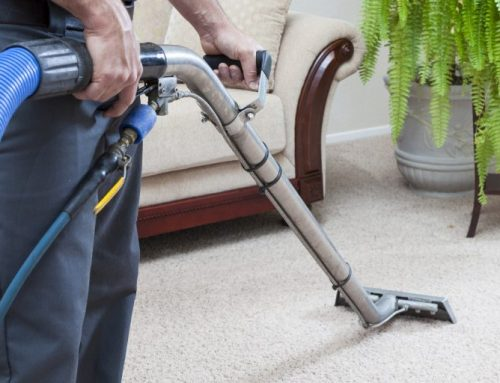 How to Ease Allergies With Carpet Cleaning